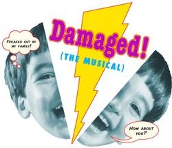 Damaged!-ImageFor-Online250