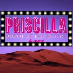 Car Crash Productions: Priscilla Queen of the Desert, 3 stars ***