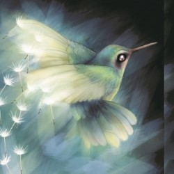 The Hummingbird Effect – 3***